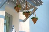 Decorativa cesta de flores — Foto de Stock