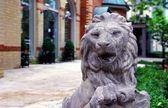 Stone statue of lion guarding houses — Stock Photo