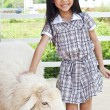 Little Asian girl in sheep farm. — Stock Photo #43077835