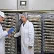 Stock Photo: Farmers controlling chicken eggs in incubator