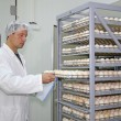 Farmer controls chicken eggs in incubator — Stock Photo #34164487