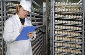 Farmer controls chicken eggs in incubator — Stock Photo