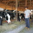 Farmer and cows in cowshed — Stock Photo #49417031