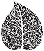 Black leaf skeleton silhouette — Stock Vector