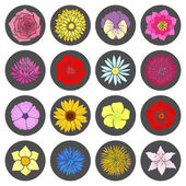 Set of abstract flat flowers. — Stockvektor