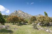 Mountain landscape at Sierra de la Cabrera — Stock Photo