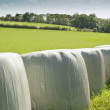 Bales of silage — Stock Photo #18940659