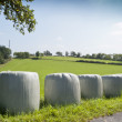 Bales of silage — Stock Photo #19214301