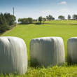 Bales of silage — Stock Photo #19468299