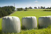 Bales of silage — Stock Photo