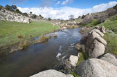 Manzanares River — Stock Photo