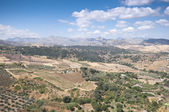 Andalusian countryside — Stock Photo