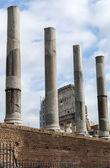 Views of Colosseum — Stock Photo