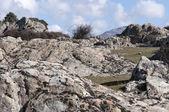 Granite outcrops — Stock Photo