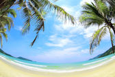 Tropical beach with coconut palms, white sand and turguoise water. — Stock Photo
