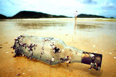 Bottle with seashells washed ashore. — Stock Photo