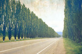 Empty road and trees as old photography — Stock Photo