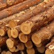 Stock Photo: Logs background
