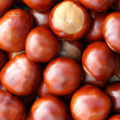 Chestnut background — Stock Photo