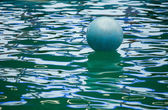 A floating ball in delphinarium — 图库照片