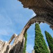 View of Bellapais Abbey — Stock Photo