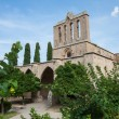 Bellapais abbey — Stockfoto #15884499