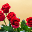 Three dark red roses — Stock Photo #17685801