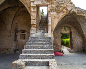 Fragment of Bellapais Abbey — Stock Photo