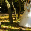 Beautiful bride amond trees — Stock Photo
