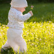 Baby girl in a summer park — Stock Photo #19932973