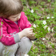 Little girl picking snowdrops — Stock Photo