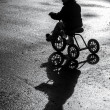 Little child riding tricycle — Stock Photo #21614891