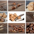 Royalty-Free Stock Photo: Collection of nut and seed images