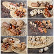 Collection of nut images — Stock Photo