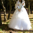 Beautiful bride among trees — Stock Photo