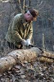 Man chopping tree — Stock Photo