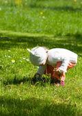 Beautiful little girl picking flowers — Stock Photo