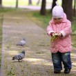 Walking baby in the park - Stock Photo