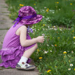 Beautiful little girl picking daisies - Foto Stock