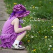 Beautiful little girl picking daisies - Photo