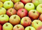 Jabłka — Zdjęcie stockowe