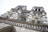Notre dame de paris — Photo