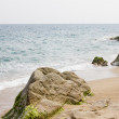 Stock Photo: Rocky shore