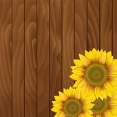Sunflowers on wooden background — Stock Vector