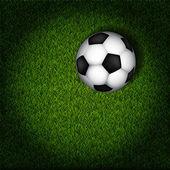 Balón de fútbol sobre césped — Vector de stock