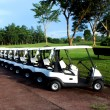 Stock Photo: Golf Carts