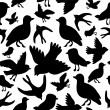 Seamless pattern with silhouettes of birds — Stock Vector