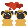 Two cute pugs in love — Stock Vector