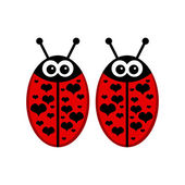 Couple of ladybirds sweet Valentine card — Stock Vector