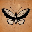 Stock Vector: Butterfly on old paper